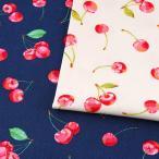 水彩さくらんぼ オックス (1m単位) 切売り 生地 布 布地 服地 綿 コットン 綿100 さくらんぼ チェリー フルーツ
