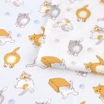 猫のオシリ オックス(1m単位) 切売り 切り売り 生地 布 布地 綿 100 コットン オックス 猫 ネコ cat 肉球