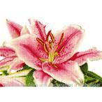 DMC 刺しゅうキット  Stargazer Lily  BK1337