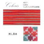 刺しゅう糸 DMC 25番 Coloris(コロリ) Scene 4517 リュタン(いたずらな妖精)