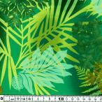 キャシー中島 (キャシーマム)ハワイアン生地20076-60 リナ