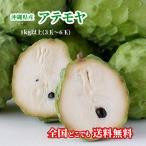 アテモヤ 沖縄県産(送料無料)1kg(3玉〜6玉) 森のアイスクリーム