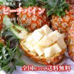 ピーチパイン 沖縄産 2.4Kg以上 食べ方説明書付き