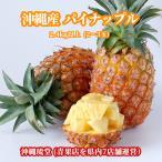 パイナップル 沖縄産 2.4kg 2玉〜3玉 食べ方説明書付き