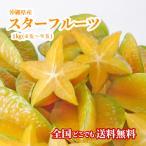 スターフルーツ 沖縄産 1kg 星の形 フルーツ
