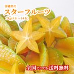 スターフルーツ 沖縄産 2kg 星の形 フルーツ