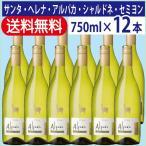 ショッピング白 白ワイン 送料無料(関東〜関西) サンタ・ヘレナ アルパカ シャルドネ・セミヨン 750ml 1ケース(12本入り)