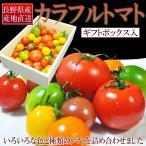 ショッピングトマト トマト カラフルトマト 詰め合わせ 送料無料 1kg 化粧箱入 長野県産