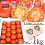 お中元 ギフト 長野県産 ぜいたくトマト1kg 化粧箱入