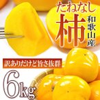 ショッピングわけあり (わけあり) たねなし柿6kg 30−40玉前後入り 紀州 和歌山県産 送料無料  フルーツ