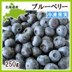 ブルーベリー(冷凍果実)250g 北海道産