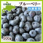 ブルーベリー(冷凍果実)500g(250g×2) 北海道産