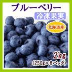 ブルーベリー(冷凍果実)2Kg(250g×8) 北海道産
