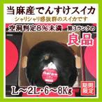 でんすけスイカ(訳あり良品)1玉(L〜2L・6〜8Kg) 北海道当麻産・出荷時期:7〜8月