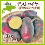 デストロイヤー (M〜Lサイズ混)10Kg 北海道産  /出荷時期 9〜3月