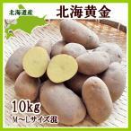 北海黄金(M〜Lサイズ混)10Kg 北海道産 ホッカイコガネ 出荷時期 9〜4月 生産元直送