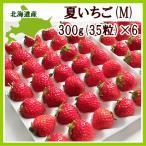 夏苺 M(300g・35粒前後)×6トレー(計1.8kg) /北海道産 出荷期間:6〜12月