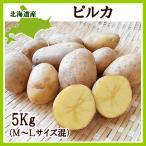 ピルカ(M〜Lサイズ混)5Kg 北海道産 じゃがいも 出荷時期 9〜4月 生産元直送