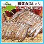 柳葉魚 - シシャモ メス20尾&オス20尾セット /北海道産