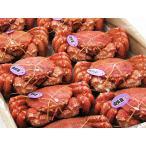 毛がに(660g前後)×6尾 北海道オホーツク産
