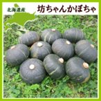 坊ちゃん かぼちゃ(300〜400g)×10玉 北海道産 南瓜 出荷時期:9〜10月