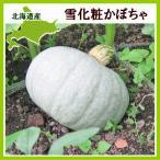 雪化粧かぼちゃ 10kg (4〜7玉)×1箱 北海道産 南瓜 出荷時期:10〜1月 生産元直送