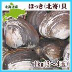 ホッキ貝(大玉・3〜4個・1Kg)×1 北海道胆振沿岸産(ほっき 北寄)
