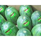 北海カンロ(L・3kg・6玉前後)×1箱 北海道産 まくわうり 出荷期間:7〜8月