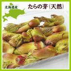 たらの芽(天然・100g)×2パック 北海道産 出荷時期 5月