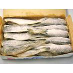氷下魚(コマイ)天日干し(L・1Kg・20尾前後)×1個  / 北海道根室産