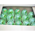 送料無料 北海カンロ(L・8Kg・16玉前後)×1箱 北海道産 あじうり 出荷期間:7〜8月