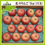 北斗りんご 5Kg(16玉)北海道旭川産 リンゴ  出荷時期:11〜12月