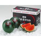 黒小玉スイカ(秀品・1玉1.6〜2.0Kg)×2玉 北海道産 期間限定・6〜9月