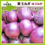 紫玉ねぎ(L〜L大)1Kg 北海道産 赤玉ねぎ レッドオニオン 出荷時期:9〜4月