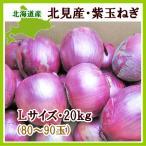 紫玉ねぎ(L〜L大)20Kg 北海道産 赤玉ねぎ レッドオニオン 出荷時期:9〜4月