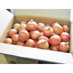 玉ねぎ(L) 20Kg 北海道産 たまねぎ 出荷時期:9〜4月