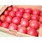 北海道産 トマト  4Kg 24玉前後×1箱(秀 Mサイズ)YES!clean表示農産物(減農薬・減化学肥料)出荷時期:6〜10月
