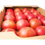 北海道産トマト 4Kg 20玉前後×1箱(秀・Lサイズ) YES!clean表示農産物(減農薬・減化学肥料) 出荷時期:6〜10月