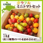 カラフルミニトマト 1Kg (約10種類・70〜80粒程度)北海道剣淵産 出荷時期:7〜9月