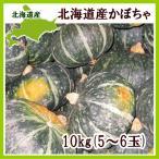 北海道産かぼちゃ 10kg(5〜6玉)×1箱  出荷時期:9〜12月