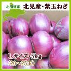紫玉ねぎ(L〜L大)5Kg 北海道産 赤玉ねぎ レッドオニオン 出荷時期:9〜4月