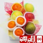 母の日 早割 快気内祝い フルーツ 果物 旬 送料無 ギフト Cコース・おまかせ旬のフルーツボックス 90013-03
