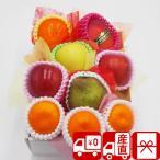 ショッピングフルーツ フルーツ ギフト お歳暮 送料無料 Fコース・おまかせ旬のフルーツボックス 98015-906