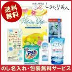 ショッピング洗剤 香典返し 送料無料 洗剤 アタック&フレッシュギフト(V-10D)