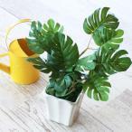【モンステラ】手のひらサイズ グリーン 観葉植物 造花 インテ…