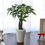 フェイクグリーン 光触媒 パキラポット2533 観葉植物 造花