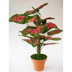 CT触媒 カラジウムの鉢植え72 造花