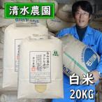 お米 白米 20kg コシヒカリ 令和2年産米 石川県産 栽培期間中農薬不使用