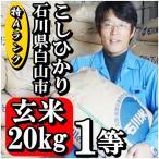 お米 玄米 20kg コシヒカリ 新米 28年産 特Aランク 石川県白山市 1等 小分けセット(10kg×2個)