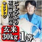 新米 28年産 玄米 コシヒカリ 30kg 特Aランク 石川県白山市 1等 小分けセット(玄米10kg×3個)